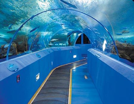 青岛海底世界 五四广场